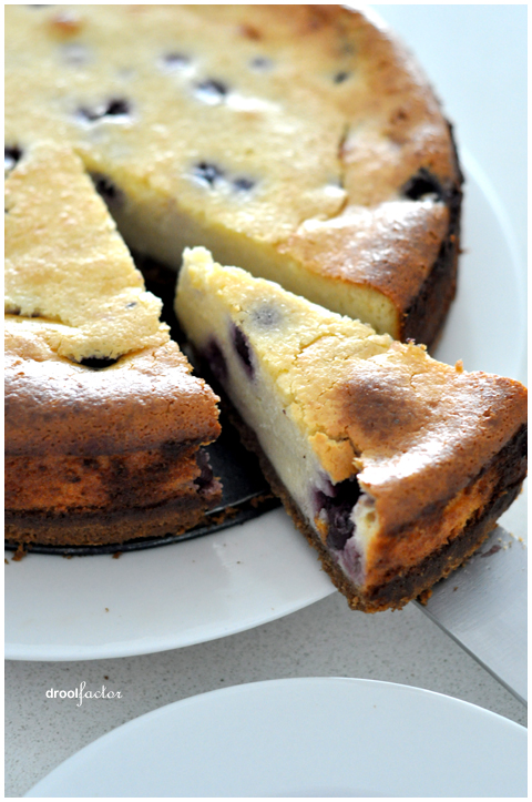 Favourite Baked Blueberry Cheesecake droolfactor